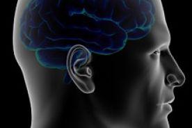 Nadciśnienie i wysoki poziom glukozy pogarszają pracę mózgu