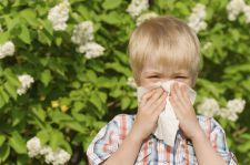 Desloratadyna i prednizolon w leczeniu dzieci z ostrymi objawami alergicznego nieżytu nosa
