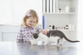 Koty chronią przed astmą