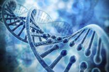 Wyciekły dane klientów firmy badającej DNA