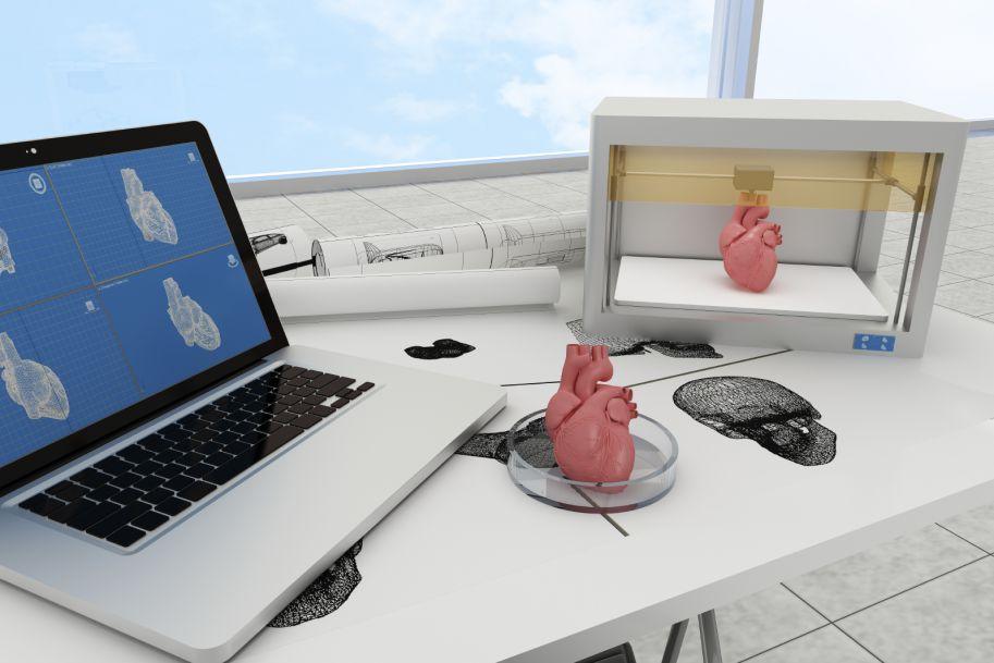 Perspektywy wykorzystania biodruku 3D w medycynie transplantacyjnej
