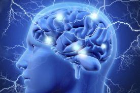 Otyłość zmienia mózg