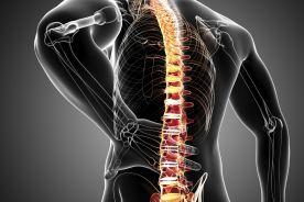 Terapia pacjentów z chorobami układu mięśniowo-szkieletowego - postępowanie w zespołach bólowych kręgosłupa i dużych stawów
