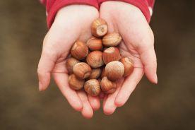 Rola doustnych prób prowokacyjnych w alergiach pokarmowych