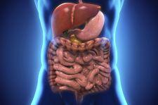 Jak czerpać energię i zdrowie z jelit?