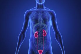 Zakażenie układu moczowego u mężczyzn