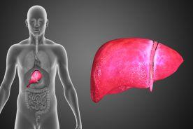 Transplantacja skuteczną metodą leczenia
