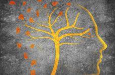 Demencja – problemy diagnostyczne i terapeutyczne