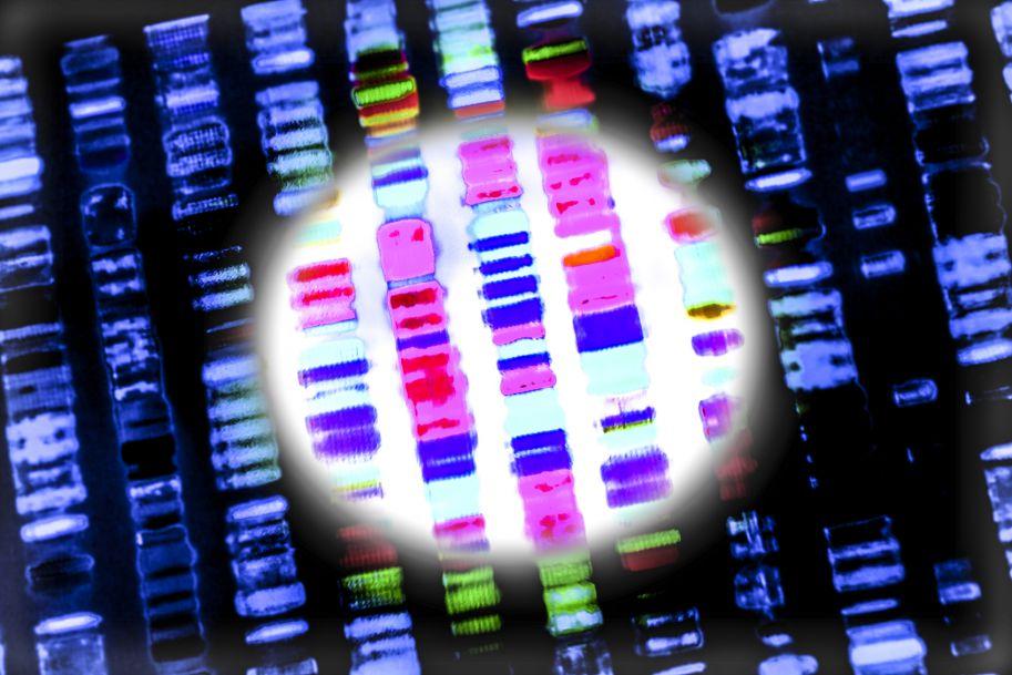 Potrzebujemy genomowego wzorca