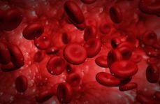 """Opracowano syntetyczne krwinki, """"lepsze niż prawdziwe"""""""