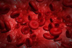 Bakterie w jelicie mają związek z miażdżycą