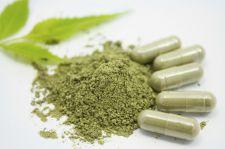 Medyczna marihuana już w Polsce. Będzie drożej niż na czarnym rynku