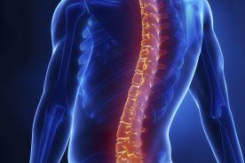 Masz problem z kręgosłupem lędźwiowym? Szybciej dostaniesz się na fizjoterapię