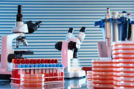 Potencjalny nowy lek na raka trzustki
