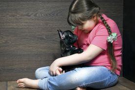 Czynniki ryzyka rozwoju miażdżycy u otyłych dzieci w wieku 6–12 lat