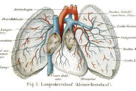 Tusz nosowy jednostronny. Historia dbania o płuca