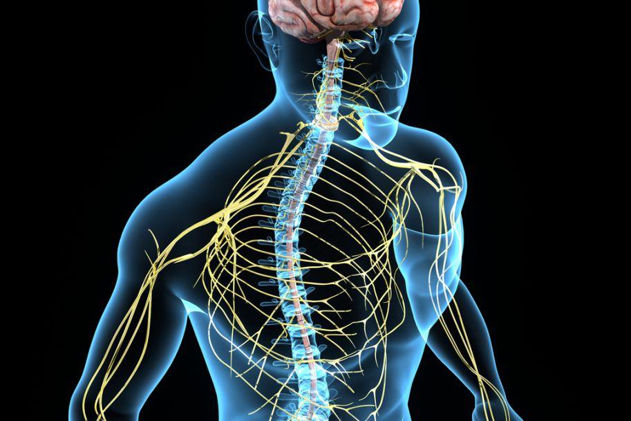 Ból neuropatyczny – epidemiologia, patomechanizm i metody leczenia