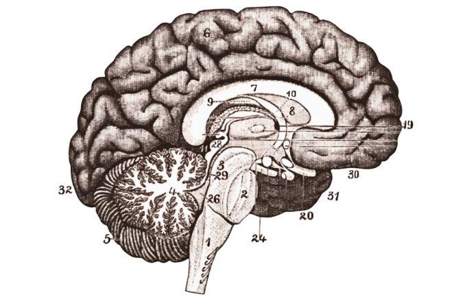 Pionierskie podanie leku do guza mózgu