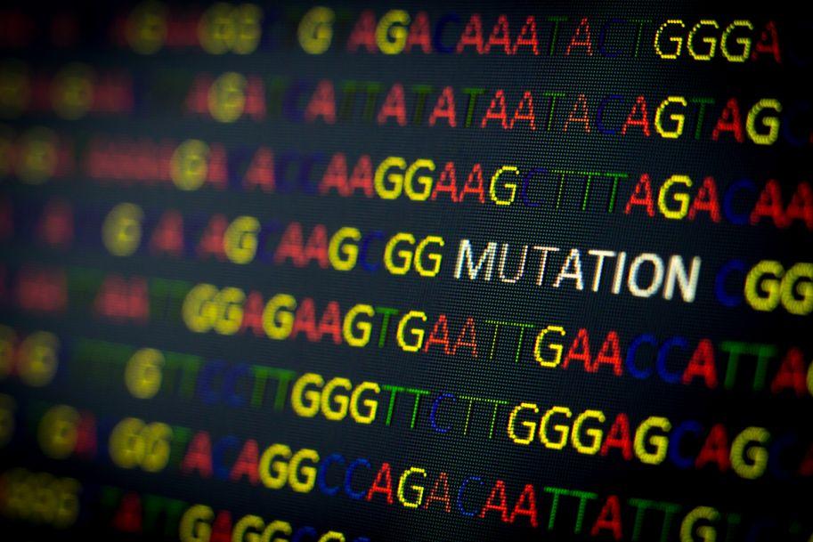 Genetyczne predyspozycje do groźnej choroby meningokokowej
