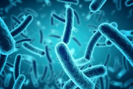 Listerioza ośrodkowego układu nerwowego u pacjenta z wrzodziejącym zapaleniem jelita grubego – opis przypadku