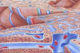 Rola kwasu ursodeoksycholowego w leczeniu schorzeń gastroenterologicznych