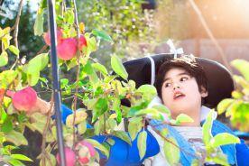 Opieka nad dzieckiem z mózgowym porażeniem dziecięcym. Zasady postępowania