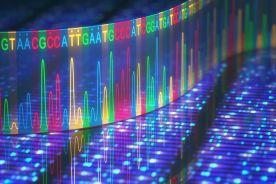 Zespół łamliwego chromosomu X i choroby FMR1-zależne – postępowanie diagnostyczne na podstawie doświadczeń własnych
