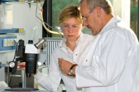 Sorafenib i IL-2 w terapii raka nerki: badanie ROSORC