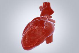 Drukują działające części serca