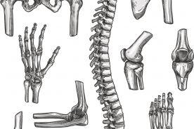 Za mało ortopedów