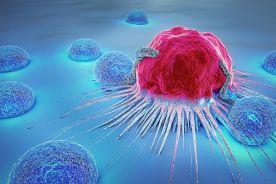 Immunologia i immunoterapia niedrobnokomórkowego raka płuca