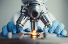 """""""Dobra"""" bakteria może wywołać chorobę autoimmunologiczną"""