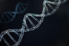 Wszechobecna genetyka