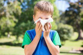Ekspozycja na zanieczyszczenia powietrza a ryzyko rozwoju alergicznego nieżytu nosa u dzieci – metaanaliza