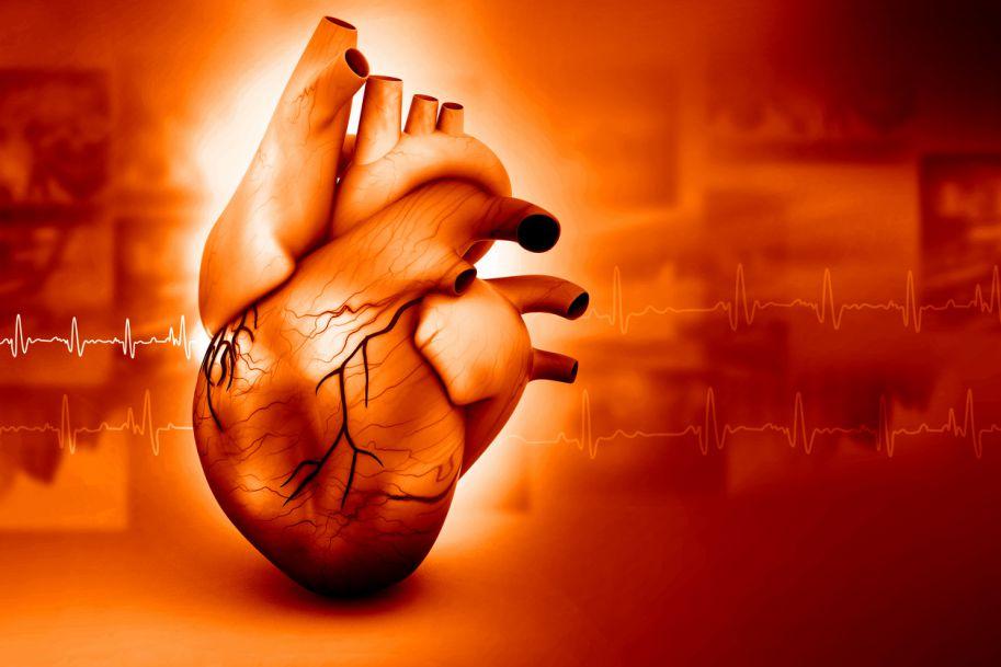Przerost mięśnia lewej komory – znaczenie oceny w diagnostyce i leczeniu nadciśnienia tętniczego w świetle nowych wytycznych ESC/ESH 2018