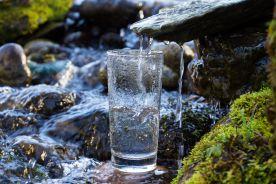 Naturalna promieniotwórczość wybranych polskich wód mineralnych i leczniczych
