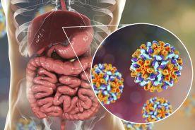 Zalecenia leczenia przewlekłego wirusowego zapalenia wątroby typu B w roku 2018 Polskiej Grupy Ekspertów HBV
