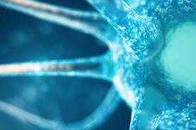 Ból neuropatyczny – nowe możliwości terapeutyczne. Rola koanalgetyków w leczeniu bólu neuropatycznego