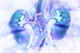 Hiponatremia spowodowana tiazydowymi i tiazydopodobnymi lekami moczopędnymi