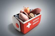 Podwójny przeszczep organów. Analiza wybranego kazusu w świetle obowiązujących przepisów prawnych