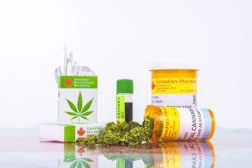 Badanie poziomu wiedzy o leczniczej marihuanie wśród studentów kierunków medycznych