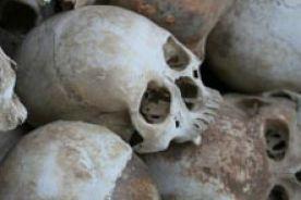 W prehistorycznym grobie znaleziono pyłki kwiatów