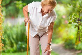 Analiza porównawcza jakości życia starszych kobiet przed protezoplastyką stawu biodrowego lub kolanowego