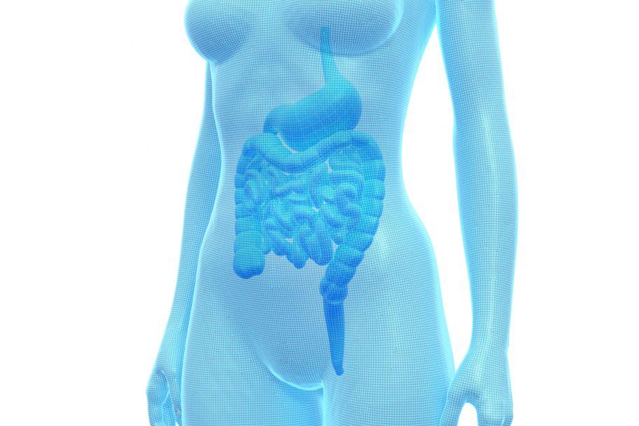 Rola czynników dietetycznych w patogenezie i leczeniu nieswoistych chorób zapalnych jelit