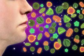Leczenie alergicznego nieżytu nosa (ANN) w czasie pandemii COVID-19