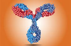 Omalizumab – program leczenia przewlekłej spontanicznej pokrzywki