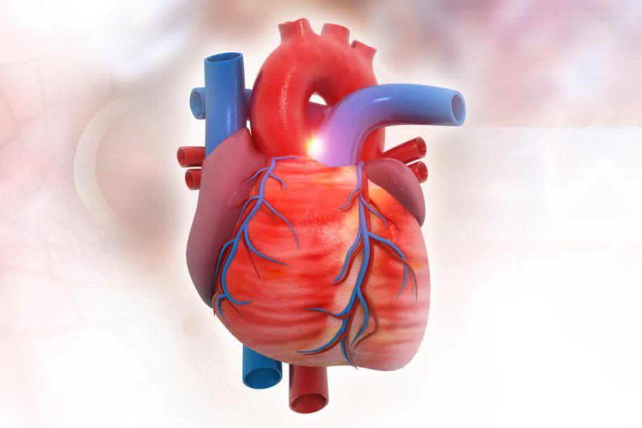 Rozpoznawanie i leczenie stenozy aortalnej z perspektywy lekarza rodzinnego