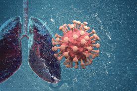 """Wirusy przeziębienia """"nie lubią"""" SARS-CoV-2"""