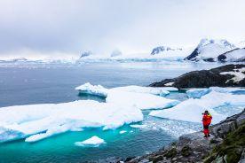 Szczepionki przeciw COVID-19 dotarły na Antarktydę