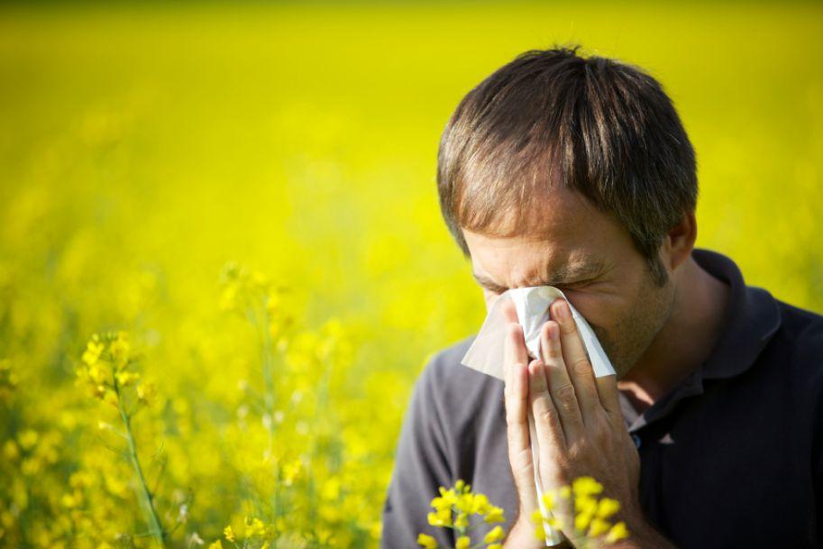 Alergiczny nieżyt nosa z punktu widzenia laryngologa